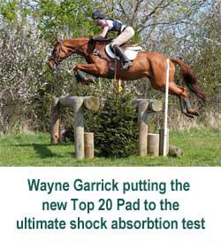 wayne-garrick
